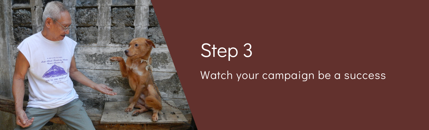 Step 3: Watch your event be a success