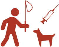 Vaccination_campaign_icon_red_country_page