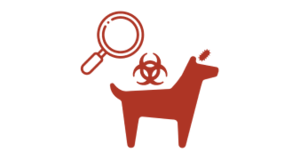 Surveillance tools for rabies elimination icon. GARC